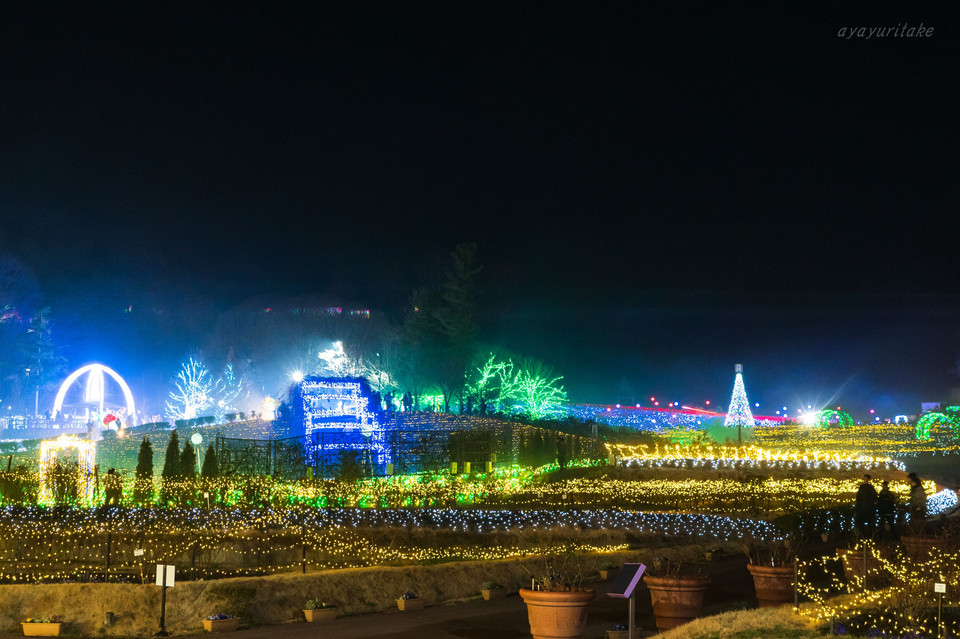 Illuminatioms in IBARAKI flower park