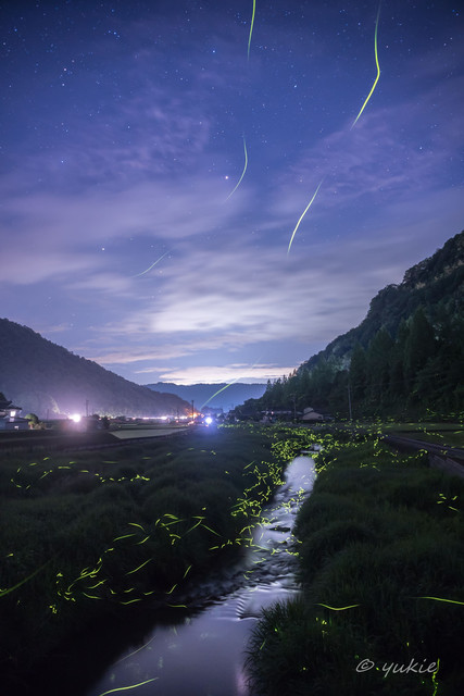 * Light Trail *