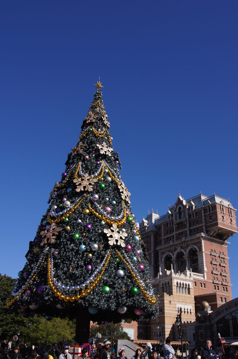 Disney Christmas at Daytime & Nighttime