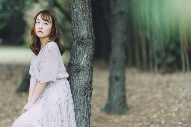 A fairy in the forest