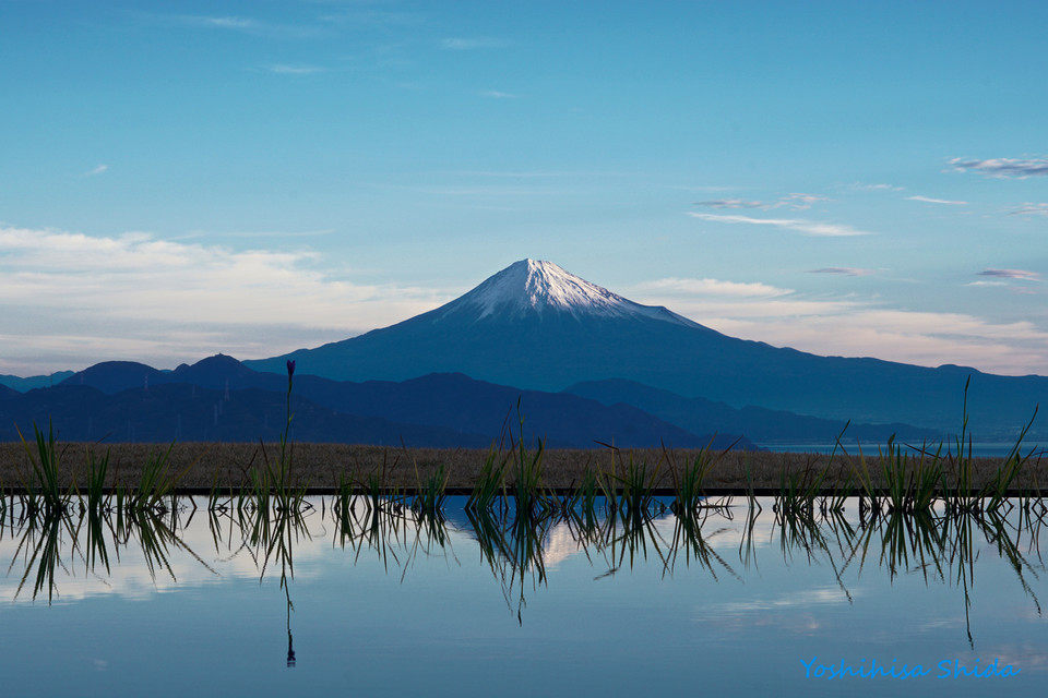 Mt Fuji with pond reflection