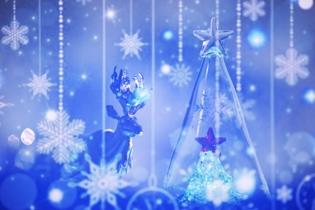 Merry Christmas and a Happy New Year!(2枚)