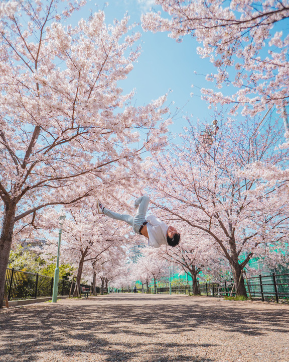 Cherry Blossom -Tricking Self Portrait-