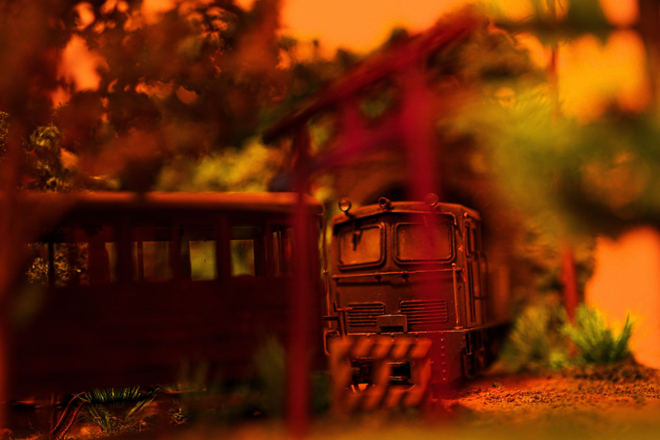 秋の夕暮れ_Sofa Forest Railway