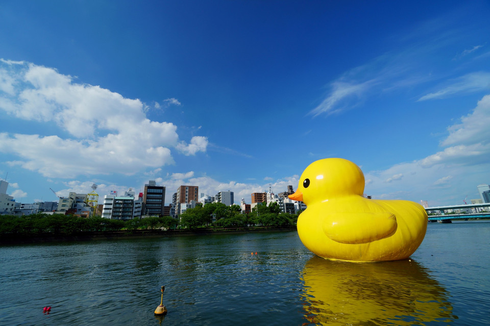 A Rubber Duck on the River