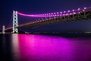Purple Bridge
