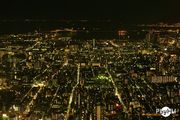 from Skytree 1