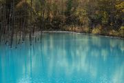 Blue pond in autumn