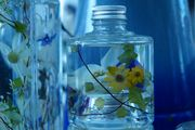 Flowers in Glass Bottle