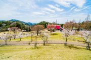 Rokko mountain ranch