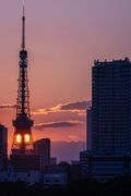 Sunset over the Tokyo Tower