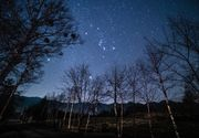""" shirakaba with Orion """