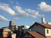 Autumn Cloud after Typhoon