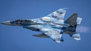 F- 15DJ Eagle Aggressor