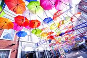 Colorful parasol street